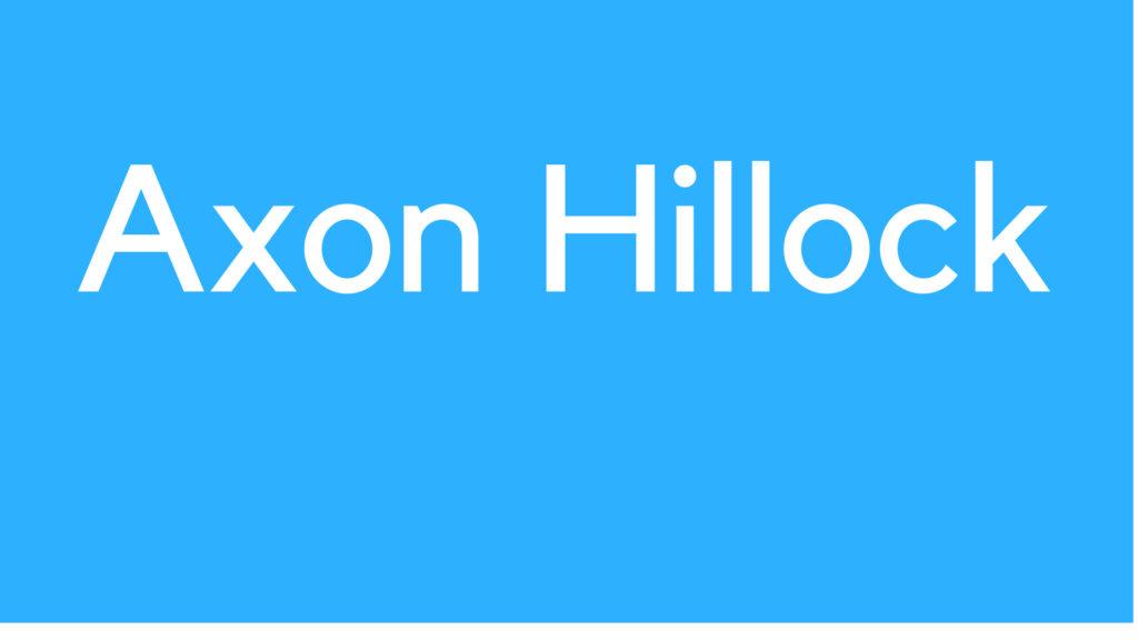 Axon Hillock